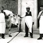 Foto antiche<br />Interno vecchio negozio Crodo